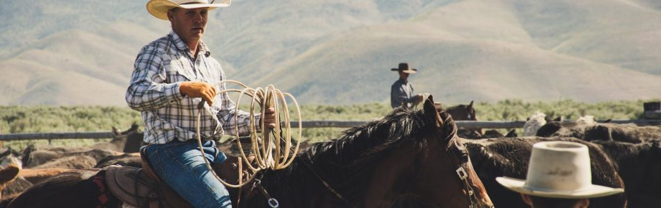 home-of-art-and-history-of-cowboy-elko